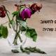 פרח נבול - לחיות את ההווה